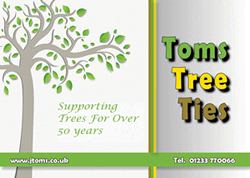 Toms Catalogue Download