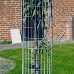 Steel Mesh Tree Guards