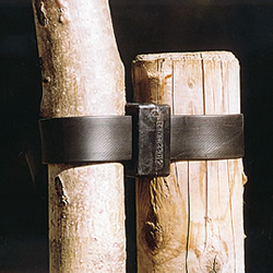Tree Tie & Support