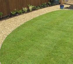 Ground Maintenance & Rite Edge Lawn Edging